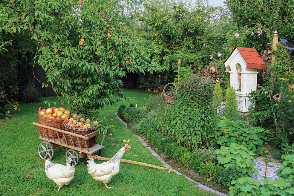 geliebte küchengärten - gourmetwelten - das genussportal, Garten Ideen